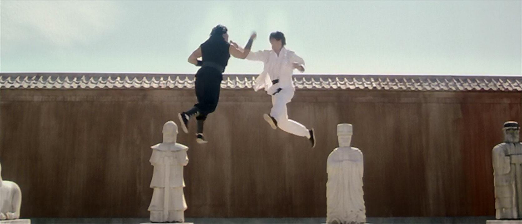 Martial Arts Stunt Fights
